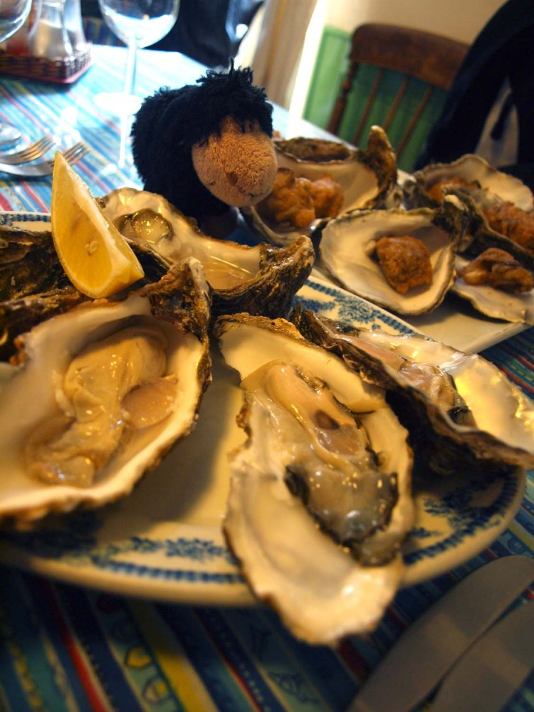 whitstable oyster fest2